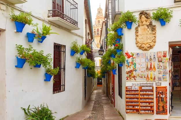 Flower street calleja de las flores cordoba, spain