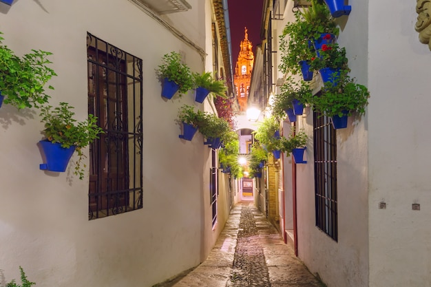 花通りcalleja de las floresコルドバ、スペイン