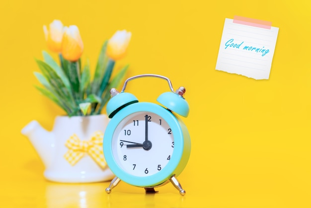 A flower in a white ceramic pot, with a blue vintage tiny alarm clock and a