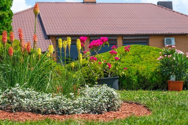 Клумба с красивыми цветущими цветами на фоне дома в европейском стиле