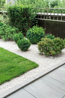Flowerbed with bushes decorated