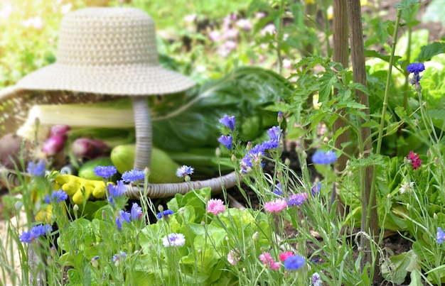 Цветущий огород с плетеной корзиной и шляпой, полной свежих овощей