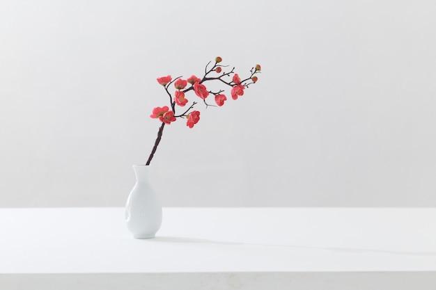 Цветущая ветка розовой вишни в белой вазе на белом фоне