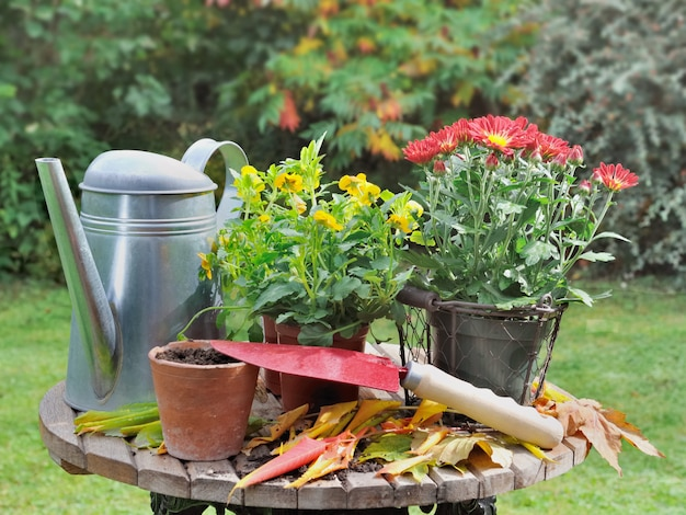 Flowerpot on a garden table with watering can and shovel in autumn