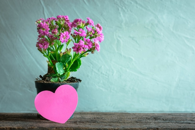 Flowerpot with heart paper note on wood table