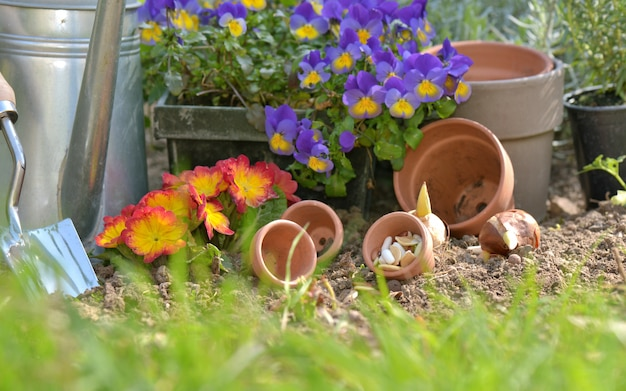 Flowerpots and gardening tools on the soil in a garden