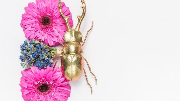 花とカブトムシ
