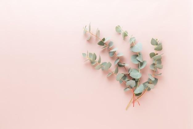 Состав цветов и эвкалипта. узор из различных ярких цветов на белом фоне.