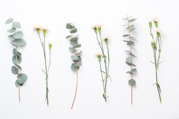 花とユーカリの組成が分離されました