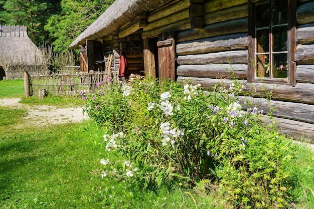 森の中の丸太小屋の端にある花や植物。