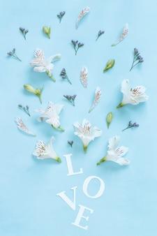 밝은 파란색 배경 평면도에 꽃과 단어 사랑
