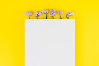Flowers background copy space