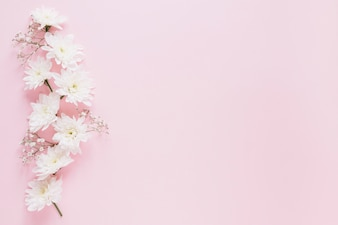 Flowers background
