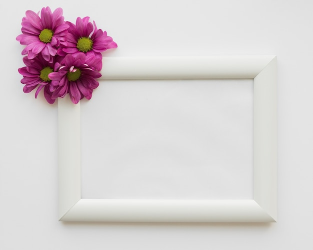 Flowers beside frame