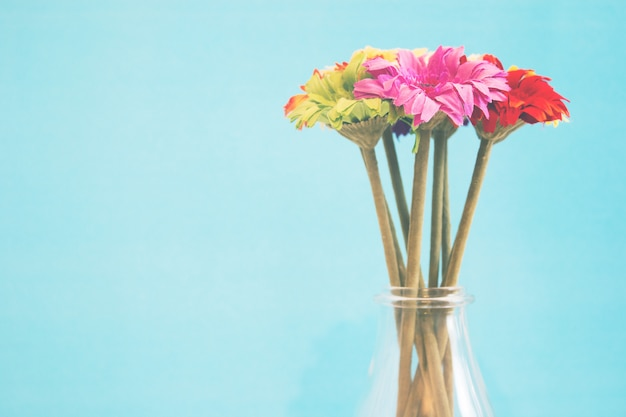 Flowers on blue background with copy space - soft light effect