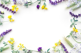 Flowers border isolated on white background