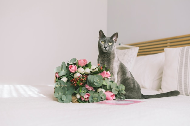 Flowers bouquet with grey cat on bed