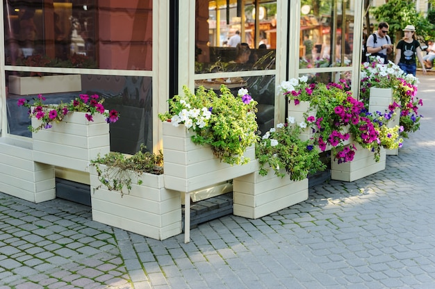 Flowers in the boxes. the summer terrace of the restaurant is decorated with flowers in ivano frankivsk, ukraine, july 18, 2017