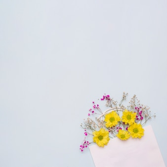 Flowers coming out from the pink paper bag against white background