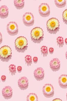 花の構成。ソフトピンクにドライフラワーで作られたフレーム。花柄のデザイン。