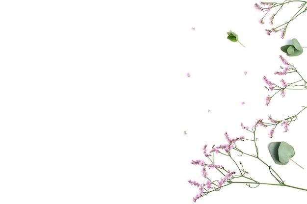 Композиция цветов. рама из розовых цветов гипсофилы и ветвей эвкалипта на белом фоне. плоская планировка, вид сверху, копия пространства.