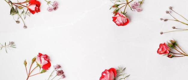 꽃 구성입니다. 흰색 회색 배경에 분홍색 장미 꽃으로 만든 프레임입니다. 평평한 평지, 평면도, 복사 공간.