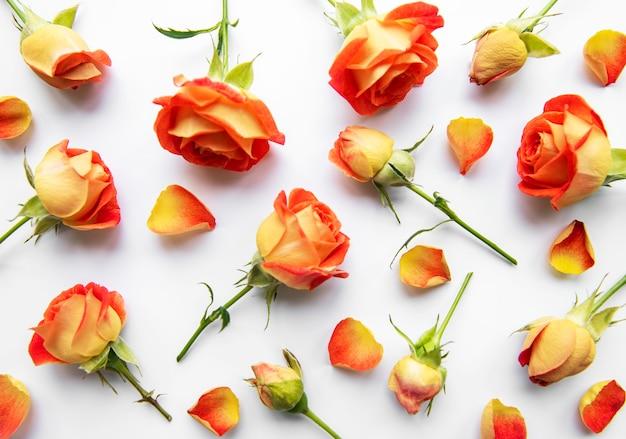 꽃 조성. 흰색 바탕에 빨간 장미와 잎으로 만든 프레임입니다. 평면도, 평면도, 복사 공간