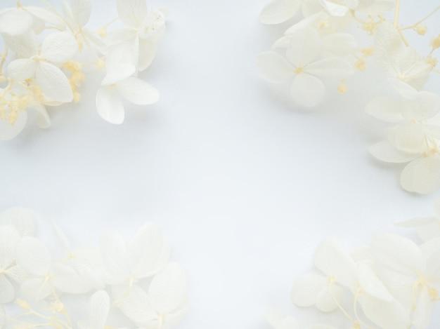 白い背景のバレンタインデーの母親に白い花アジサイで作られた花の構成フレーム