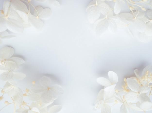 花の構成。白い背景の上の白い花アジサイで作られたフレーム。結婚式の日、母の日、女性の日のコンセプト。フラットレイ、上面図。
