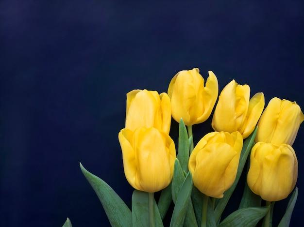 花の構成。青い背景に黄色いチューリップで作られたフレーム。バレンタインデー、母の日、女性の日のコンセプト。フラットレイ、上面図。