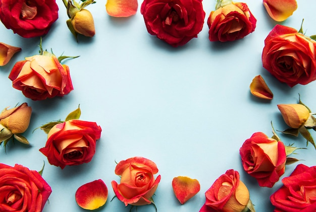 Flowers composition. frame made of red  roses and leaves on blue background. top view, flat lay, copy space