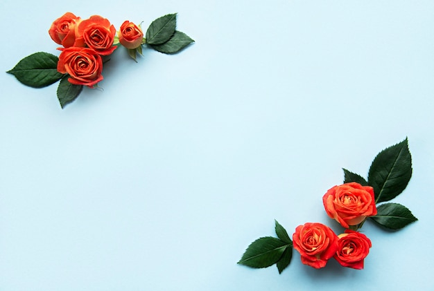 Flowers composition frame made of red roses and leaves on blue background
