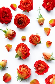 Flowers composition. frame made of red  roses and leaves on white background. top view, flat lay, copy space