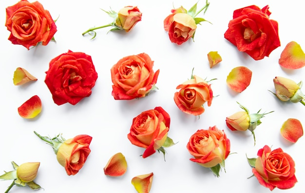 Flowers composition frame made of red roses and leaves on white background