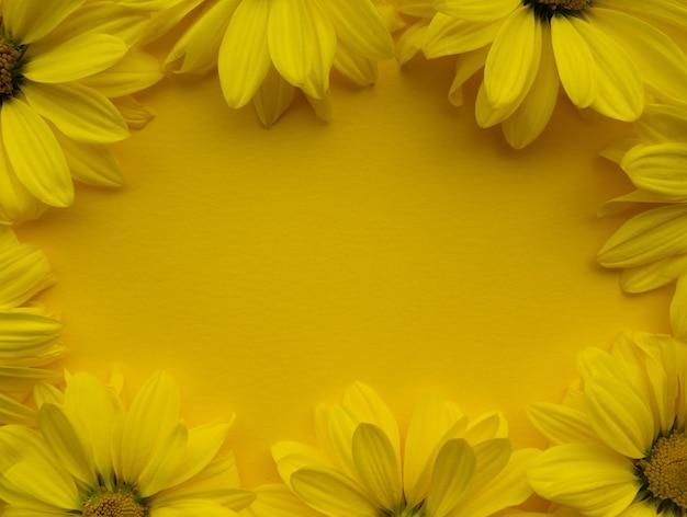 Композиция цветов из цветов хризантемы на желтом фоне. цвет 2021 года с подсветкой, весна, лето, шаблон для ваших проектов.