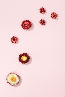 부드러운 분홍색에 말린 붉은 꽃에서 꽃 구성. 플로랄 디자인 패턴입니다. 평평한 평지, 평면도.