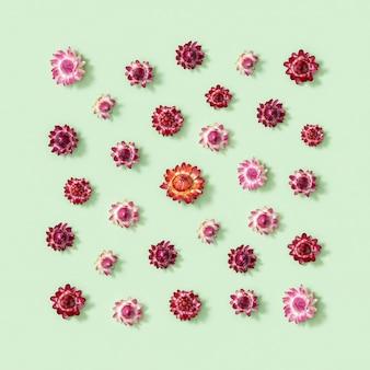 Композиция цветов. открытка из сушеных красных цветов. цветочный дизайн