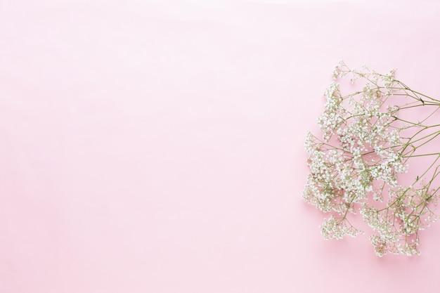 花の構成。パステルピンクの背景にカスミソウの花。フラットレイ、上面図、コピースペース
