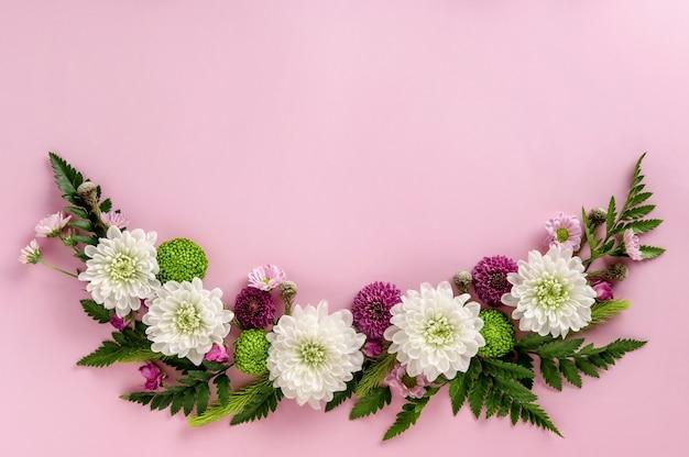ピンクの背景に分離された色とりどりの花菊の花の構成。菊の花の夏の花輪。フラットレイ。