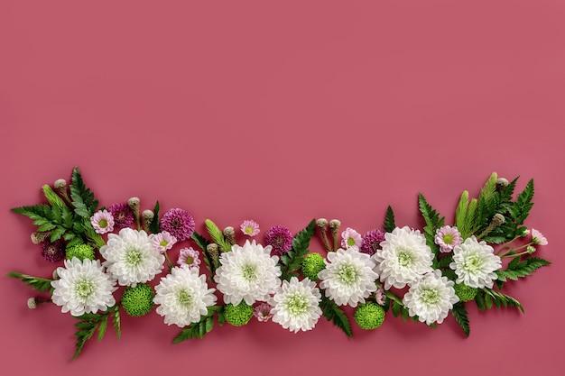 ピンクの背景に分離された色とりどりの花菊の花の構成。菊の花の夏の花輪。