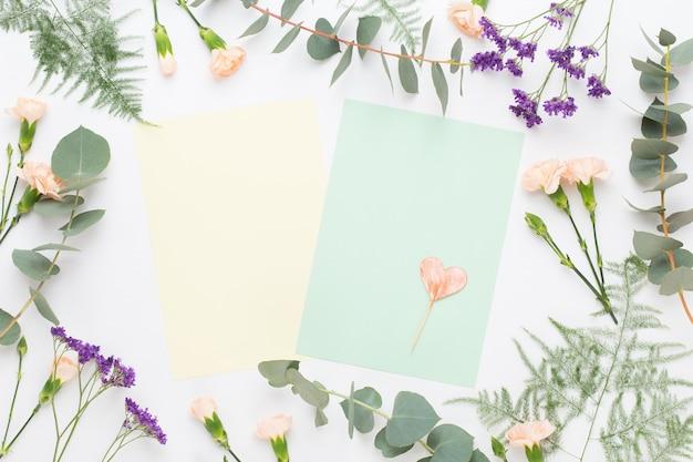 Композиция цветов. заготовка бумаги, цветы гвоздики, ветви эвкалипта на пастельном фоне. плоская планировка, вид сверху, копия пространства