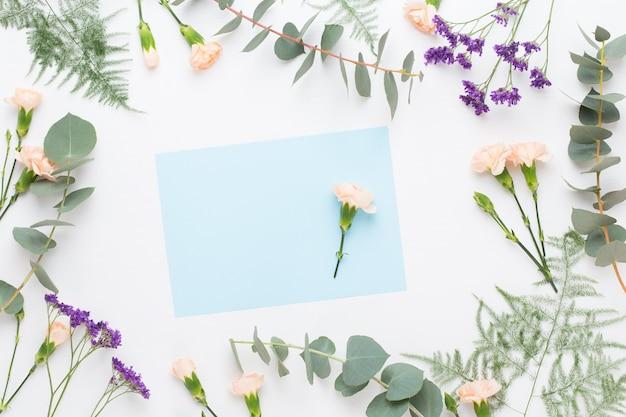 花の構成。紙の空白、カーネーションの花、パステルカラーの背景にユーカリの枝。フラットレイ、上面図。