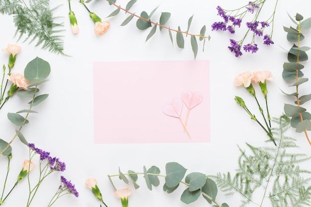 Композиция цветов. заготовка бумаги, цветы гвоздики, ветви эвкалипта на пастельном фоне. плоская планировка, вид сверху.