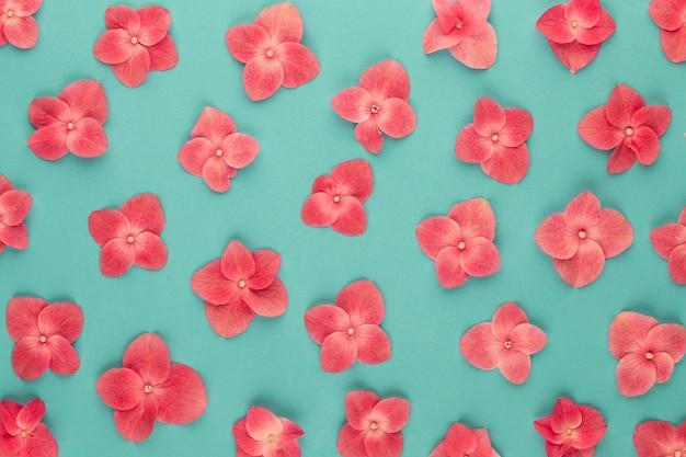 花の組成物。ピンクの花の背景のパターン。フラット横たわっていた、トップビュー、コピースペース。