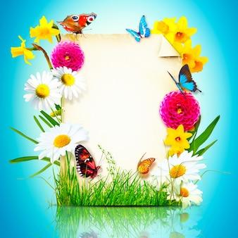 Композиция цветов. фоторамка, весенние цветы на пергаменте.