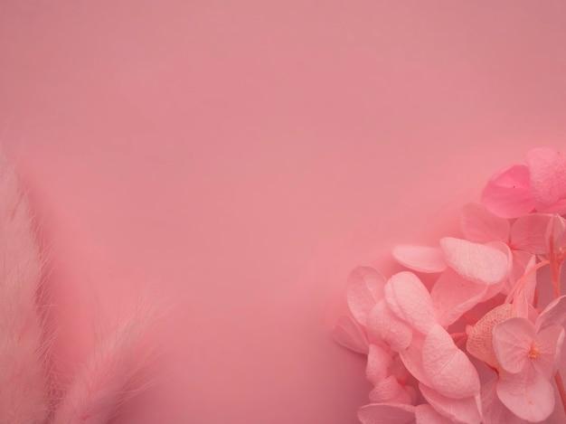 Композиция цветов. розовые цветы на мягком розовом фоне. весна, лето концепция. плоская планировка, вид сверху, копия пространства.