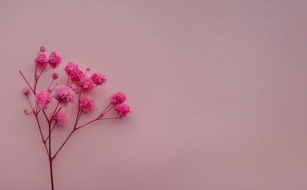 Композиция цветов розовые цветы на мягком розовом фоне весна лето концепция плоская планировка вид сверху
