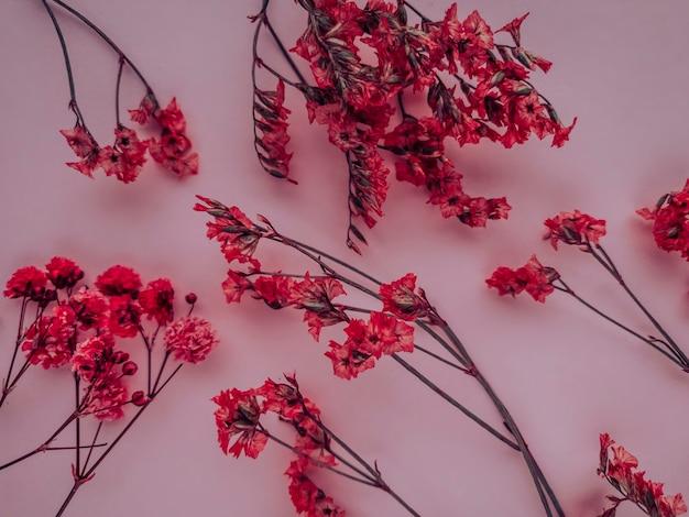 Композиция цветов. красные цветы на красном фоне. весна, лето концепция. плоская планировка, копия пространства.