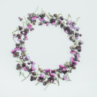 Flowers composition. round frame made of green branches of thistle with thorns and blossoming tender crimson flowers .