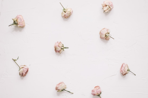 白い表面にピンクのバラと花の構成